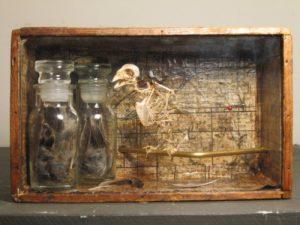 failingsparrow