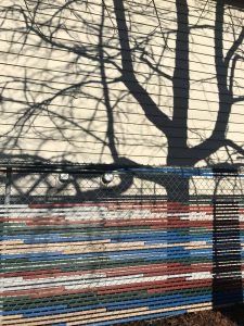 tree shadows, siding, colored fencing